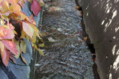 Herbstlaub über Bewässerungsabzugsgraben Stockfotos