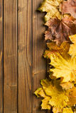 Herbstlaub über hölzernem Hintergrund mit Kopienraum Lizenzfreie Stockfotografie