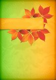 Herbstlaub auf altem zerknittertem Papier mit Fahne Stockfoto