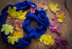 Herbstlaub auf Bretterboden und blauem Schal Stockfotografie