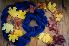 Herbstlaub auf Bretterboden und blauem Schal Stockfoto