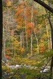 Herbstlaub auf dem Farmington-Fluss, Connecticut, gestaltet durch BH stockbild