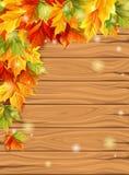 Herbstlaub auf dem Hintergrund von hölzernen Brettern, Design-Schablonensatz des Ahorns dekorativer Auch im corel abgehobenen Bet Stockfotografie