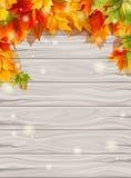 Herbstlaub auf den hölzernen Brettern des Hintergrundlichtes, Ahornblattdekorationsdesign Auch im corel abgehobenen Betrag Stockfotos