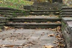 Herbstlaub auf einem allgemeinen Park in Sofia, Bulgarien Lizenzfreies Stockbild