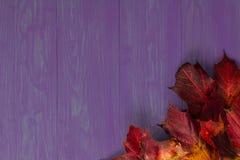 Herbstlaub auf einem hölzernen Hintergrund lizenzfreies stockbild