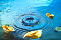 Herbstlaub auf geplätscherter Wasseroberfläche Lizenzfreies Stockbild