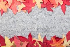 Herbstlaub auf Steinhintergrund Stockfotografie