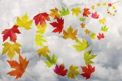 Herbstlaub - bunte Blätter Stockfoto
