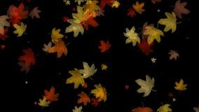Herbstlaub, der auf den schwarzen Hintergrund fällt vektor abbildung