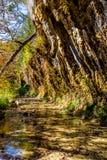 Herbstlaub an der Grotte in verlorenem Ahorn-Nationalpark in Texas Lizenzfreie Stockfotografie