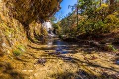 Herbstlaub an der Grotte in verlorenem Ahorn-Nationalpark in Texas Stockbilder