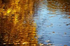 Herbstlaub, der im Wasser sich reflektiert Stockfoto