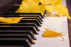 Herbstlaub die Schlüssel auf Klavier Lizenzfreie Stockbilder