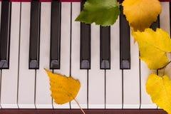 Herbstlaub die Schlüssel auf Klavier Stockbild