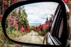 Herbstlaub durch das mirrow Lizenzfreie Stockbilder
