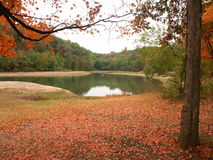Herbstlaub durch kleinen Teich Stockfotos