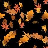Herbstlaub in einem Wasser Stockbild