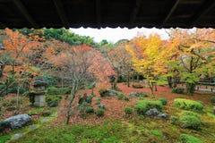 Herbstlaub an Enkoji-Tempel, Kyoto, Japan Stockfotografie