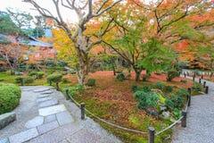 Herbstlaub an Enkoji-Tempel, Kyoto, Japan Stockbild