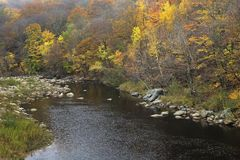 Herbstlaub erhellt das Connecticut River Ufer in Vermont, US lizenzfreie stockbilder