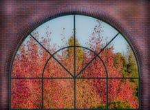 Herbstlaub-Fenster Stockfotos