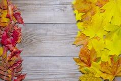 Herbstlaub gestaltete Hintergrund Lizenzfreie Stockbilder