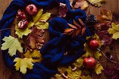 Herbstlaub, Granatapfel und blauer Schal Lizenzfreie Stockfotos