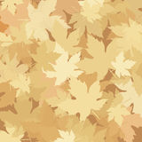 Herbstlaub, Herbstsaison Stockfotos