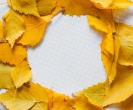 Herbstlaub im Kreisrahmen mit Platz für Ihren Text Lizenzfreie Stockfotografie