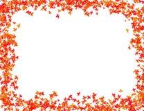 Herbstlaub im roten Schattenrahmen Stockfoto