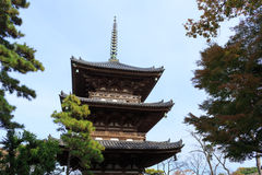 Herbstlaub im Sankeien-Garten, Yokohama, Kanagawa, Japan Lizenzfreie Stockfotografie