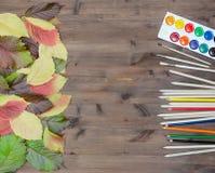 Herbstlaub malt Bleistifte und Bürsten auf hölzernem Hintergrund Lizenzfreies Stockbild