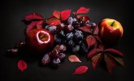 Herbstlaub mit roten Trauben und Äpfeln Lizenzfreies Stockbild
