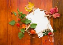 Herbstlaub mit Weißbuch für Text Stockbild