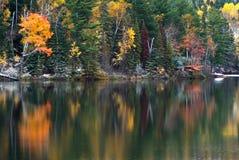 Herbstlaub nach hellen Schneefällen Lizenzfreie Stockfotografie
