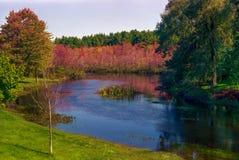 Herbstlaub Neu-England Stockfotos