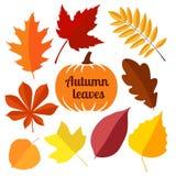 Herbstlaub stellte 1 ein Lizenzfreie Stockfotografie