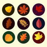 Herbstlaub stellte 4 ein Stockfotografie