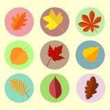 Herbstlaub stellte 5 ein Lizenzfreie Stockfotos