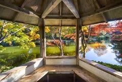 Herbstlaub in Texas stockbilder