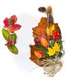 Herbstlaub und Anlagen, Papier für Anmerkungen. Lizenzfreie Stockfotografie