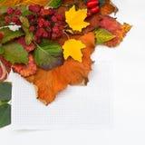 Herbstlaub und Beeren mit Papier Stockbild
