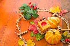 Herbstlaub und Kürbise. Lizenzfreie Stockbilder