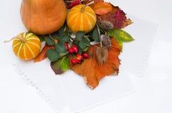 Herbstlaub und Papier Stockfoto