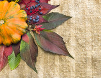Herbstlaub und reifer Kürbis Stockbild