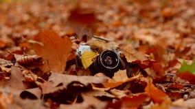 Herbstlaubfälle auf die alte Kamera stock video