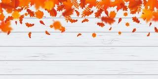 Herbstlaubfalllaub-Muster autumanl fallende Blätter auf hölzernem Hintergrund des Vektors lizenzfreie abbildung