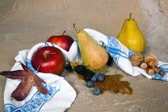 Herbstlaubnüsse und -früchte stockfotografie