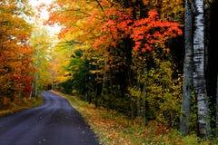 Herbstlaufwerk stockfotografie